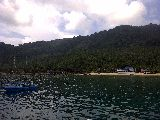 Tioman-20110814-00005.jpg